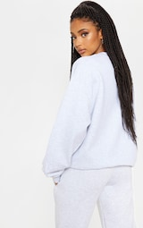 PRETTYLITTLETHING Ash Grey Embroidered Sweatshirt 2