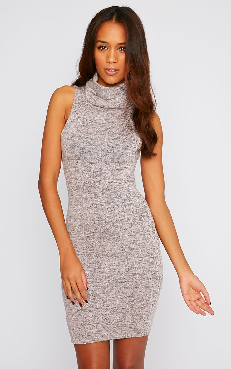 Hazel Pink Marl Roll Neck Knitted Dress 1