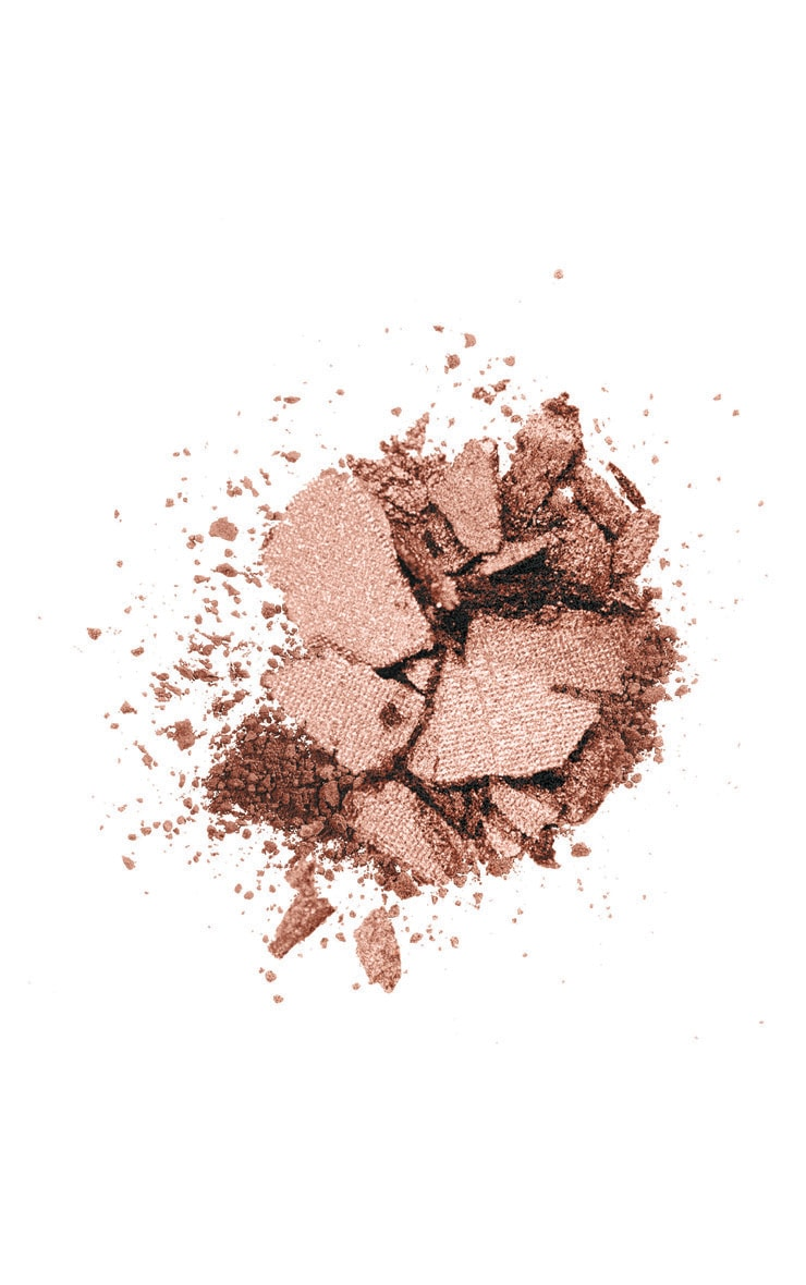 Wet n wild Color Icon Bronzer What Shady Beaches 3