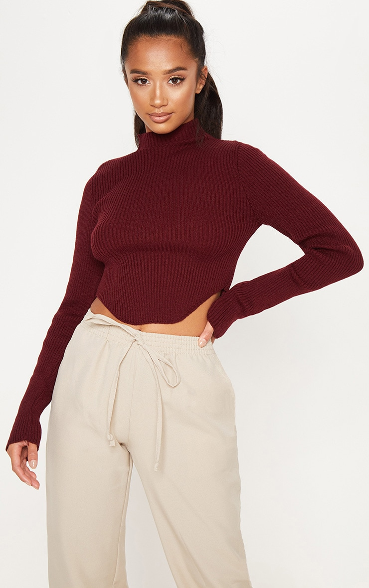 Petite Burgundy High Neck Curve Hem Sweater 1