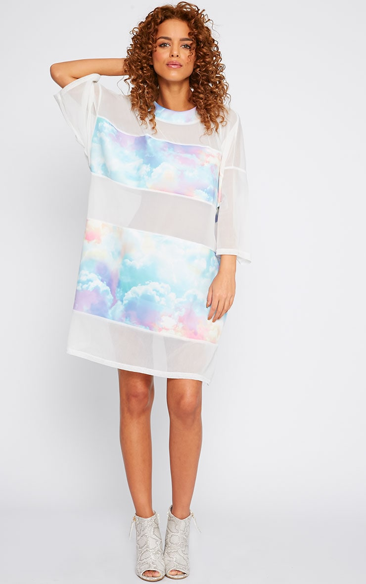 Yakira Cloud Print Mesh Panel Dress 3