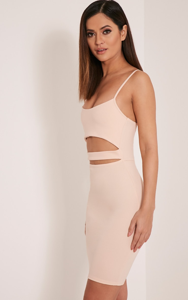 Petite Roxanne Nude Cut Out Mini Dress 4