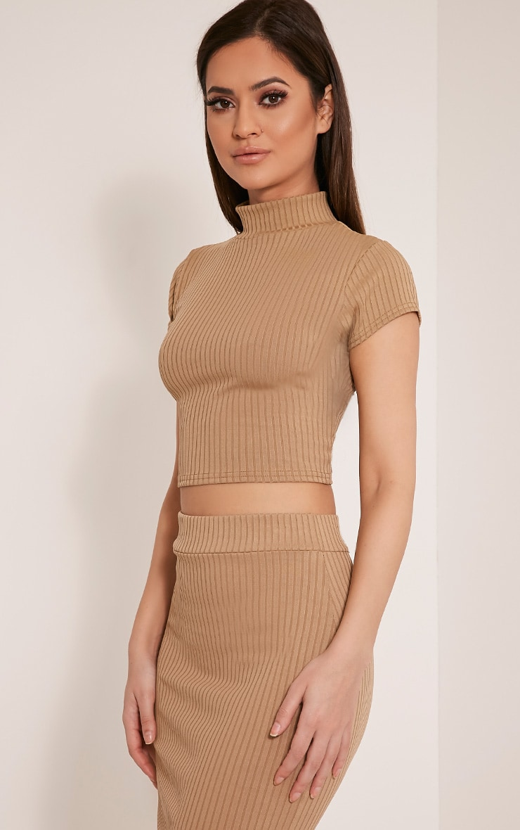 Florence Camel Ribbed High Neck Crop Top 4