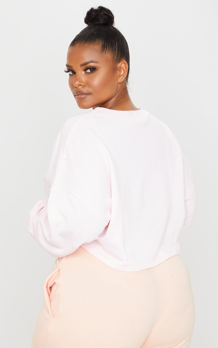 Plus Blush Crop Sweater 3