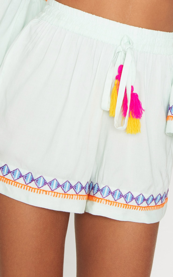 Mint Embroidered Floaty Shorts 6