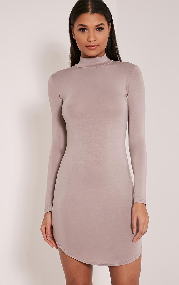 Alby Taupe Curve Hem High Neck Dress 1