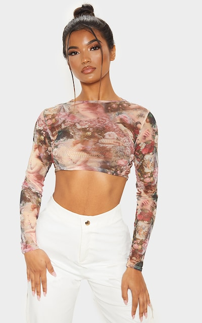 Rose Renaissance Printed Mesh Long Sleeve Crop Top