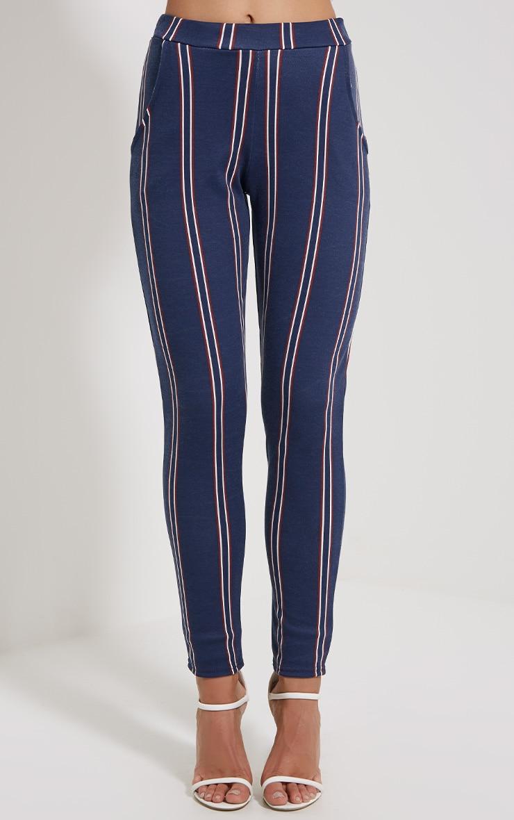 Efren Navy Stripe Trousers 2