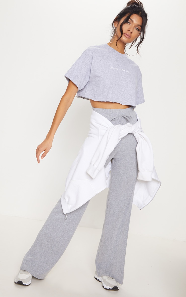 PRETTYLITTLETHING Grey Slogan Crop T shirt 4