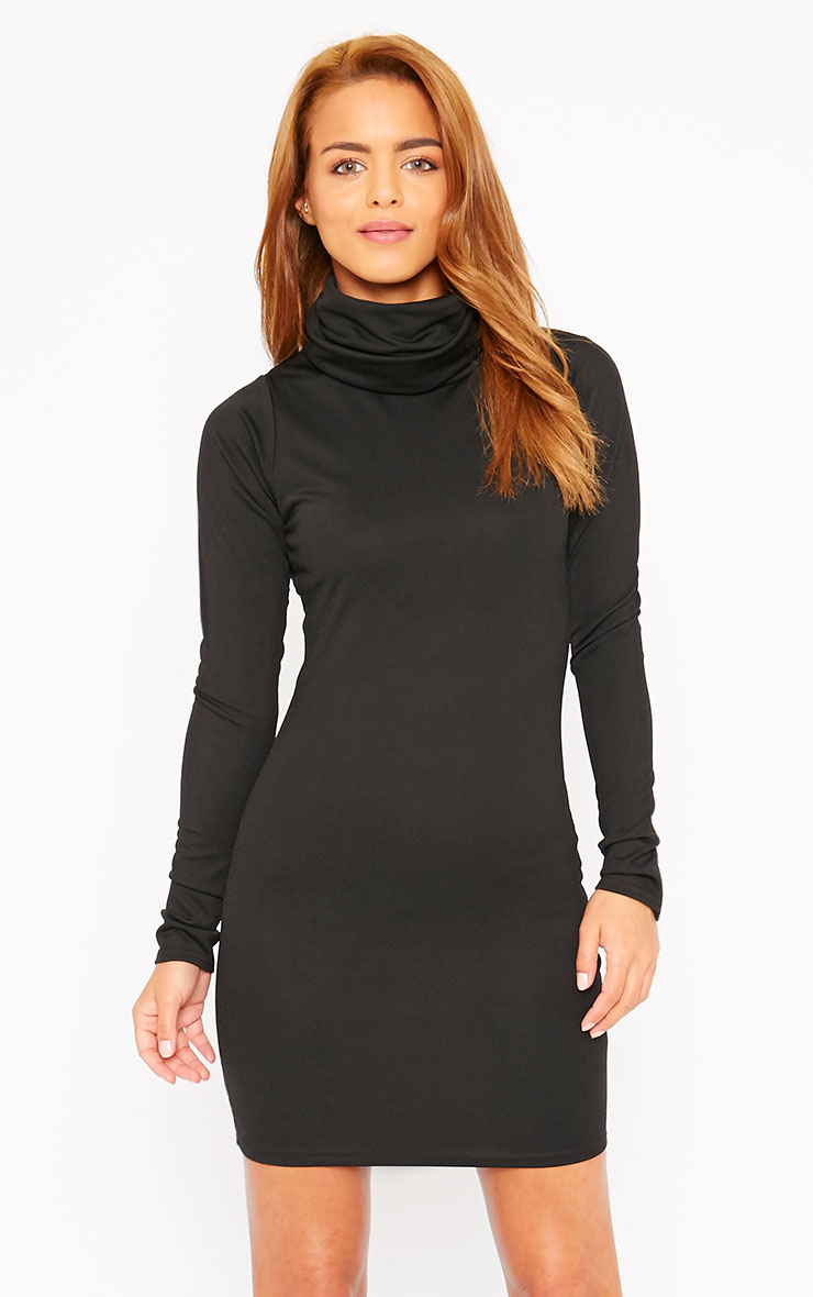Catrina Black Roll Neck Dress 4