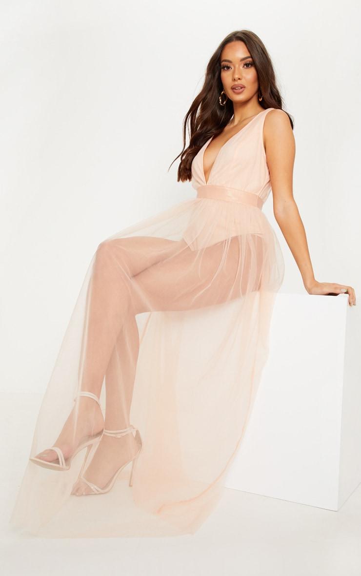 Nude Mesh Plunge Maxi Dress 4