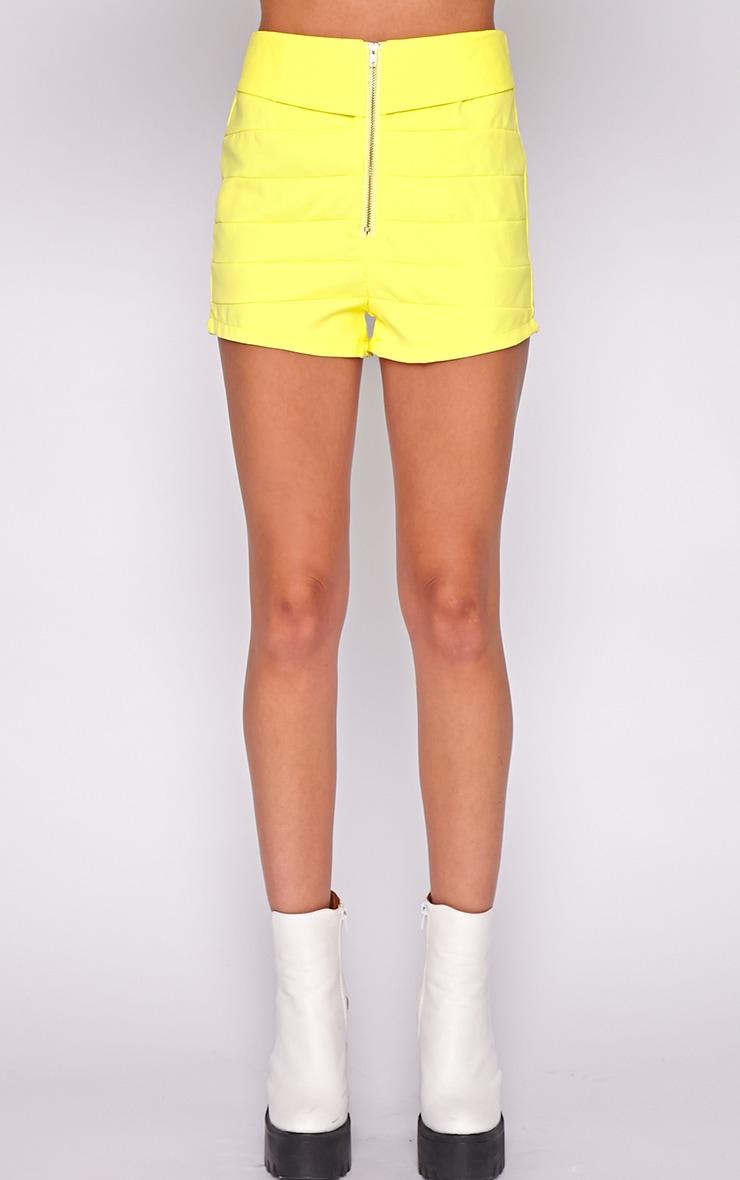 Kiana Yellow Striped Zip Front Short 2