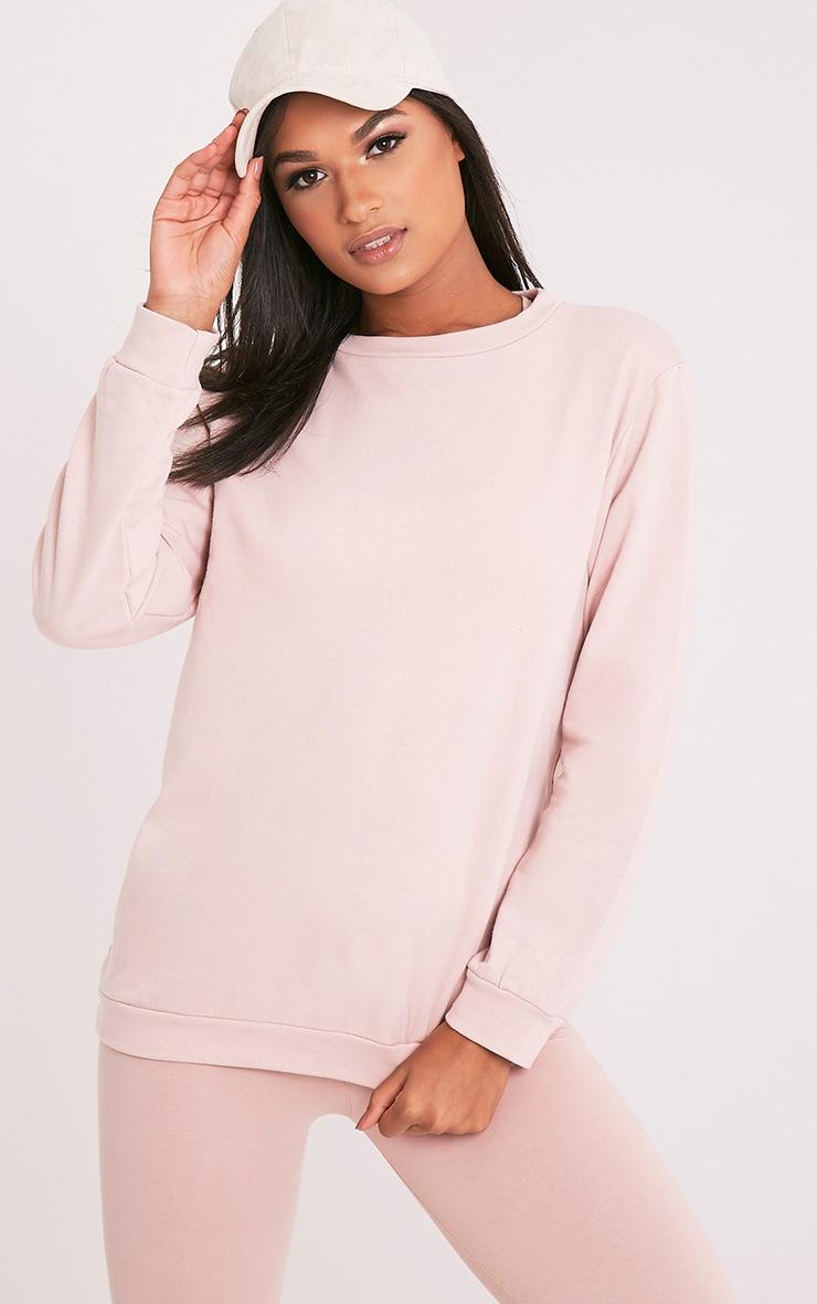 Hinton Pink Longsleeve Crew Neck Sweater 1