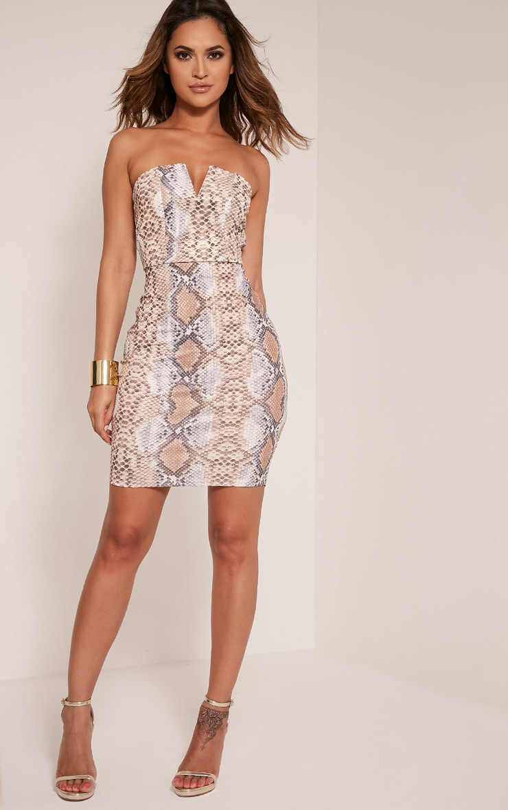 Michelle Taupe Snake Print Bandeau Dress 5