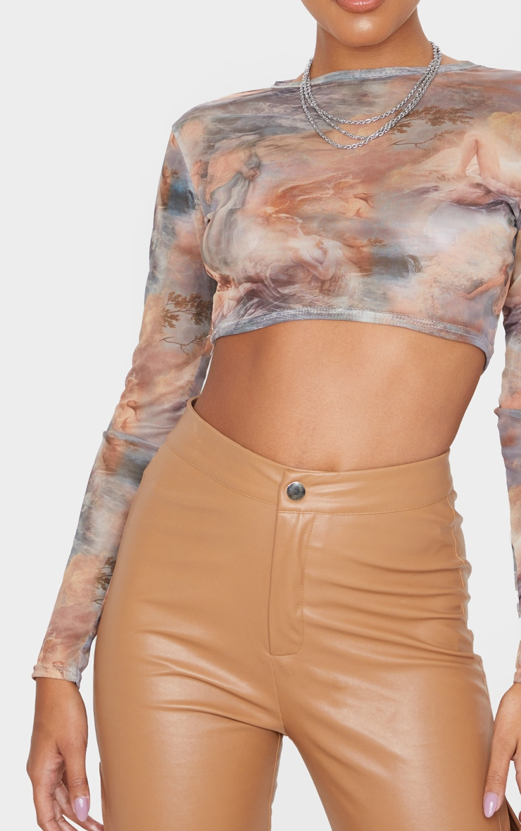 Multi Renaissance Printed Mesh Long Sleeve Crop Top 5