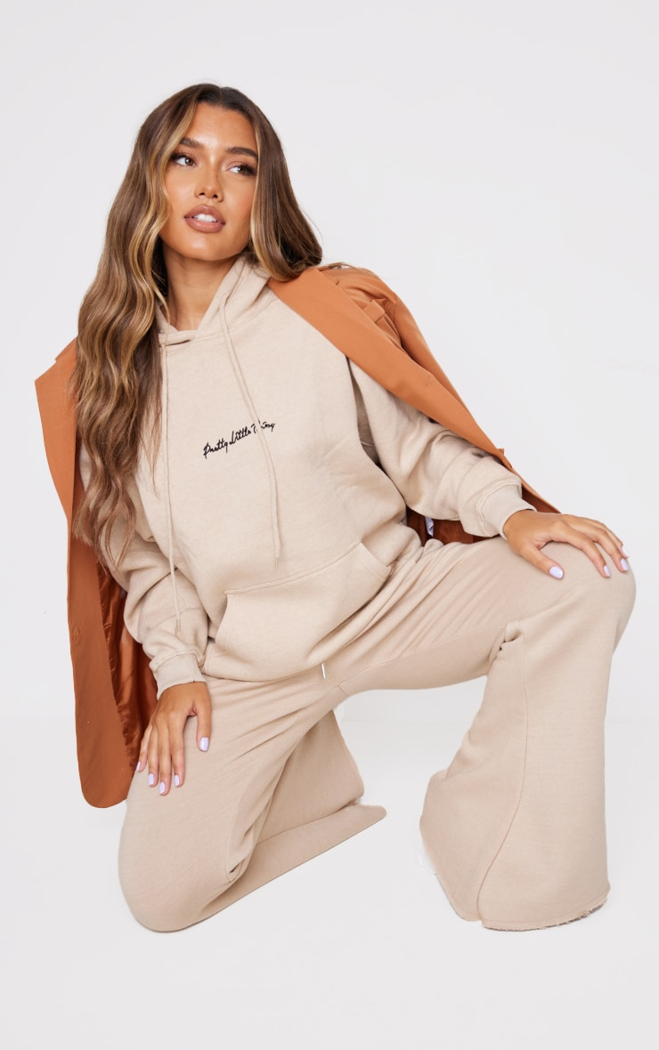 PRETTYLITTLETHING Stone Embroidered Oversized Hoodie 3