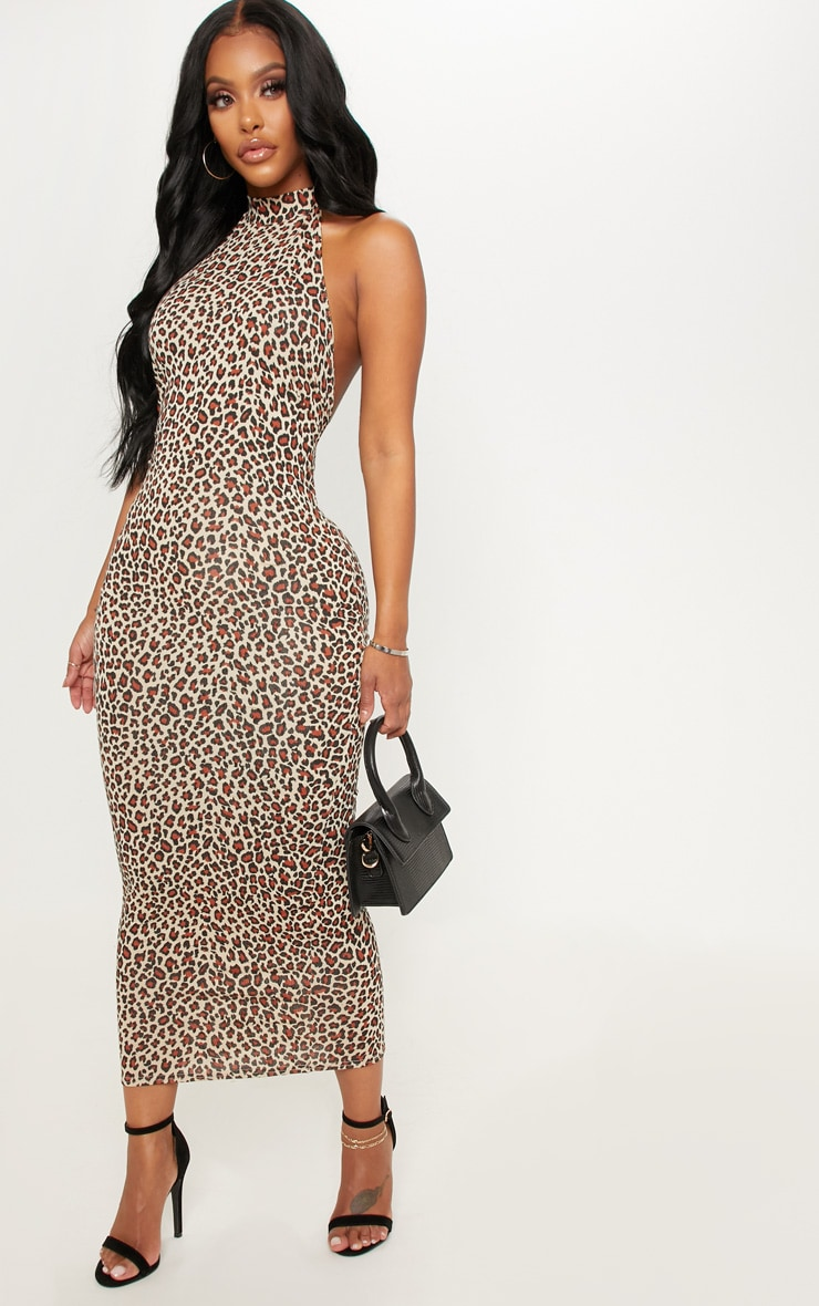Shape Tan Leopard Print Halterneck Midaxi Dress 4