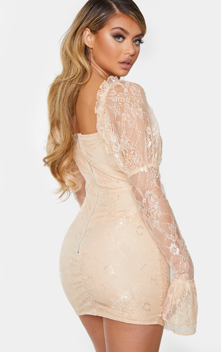 Nude Lace Rose Embroidered Long Sleeve Bodycon Dress 2