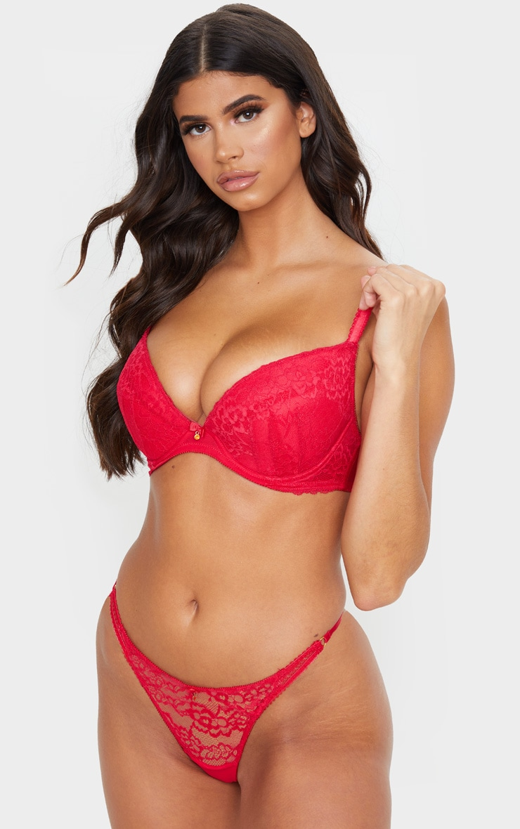 red ann summers dd+ plunge sexy lace bra
