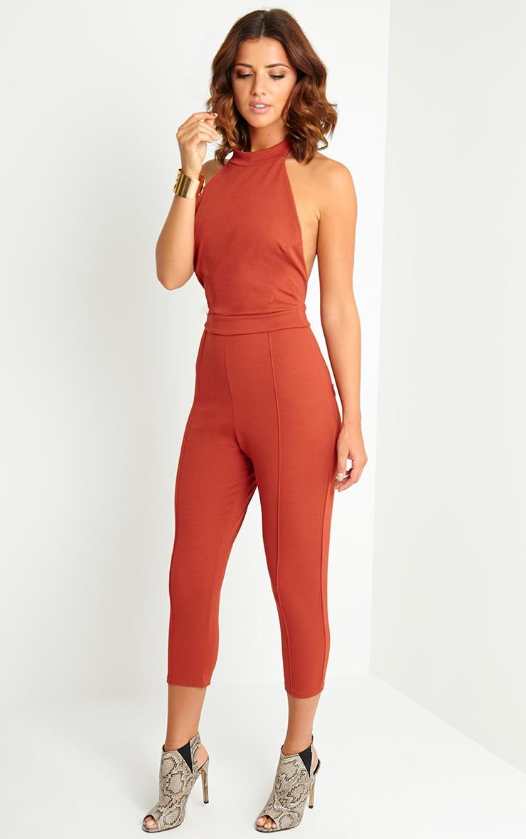 Nicki Rust Backless Jumpsuit 4