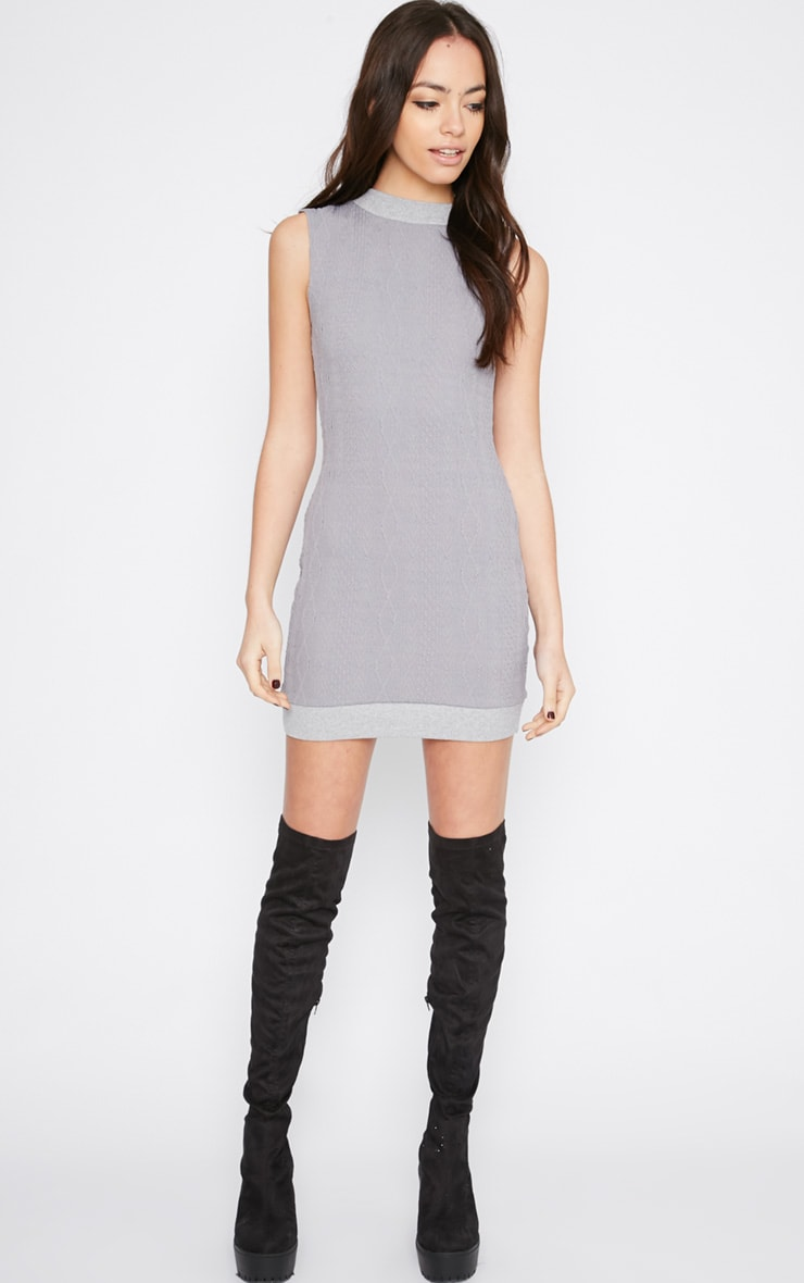 Darcie Grey Cable Knit Textured Sleeveless Dress 3
