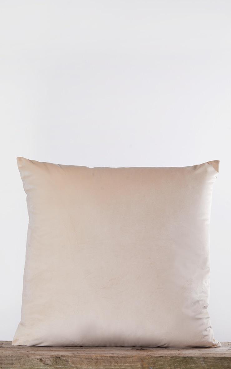 Cream Velvet Filled Cushion 3