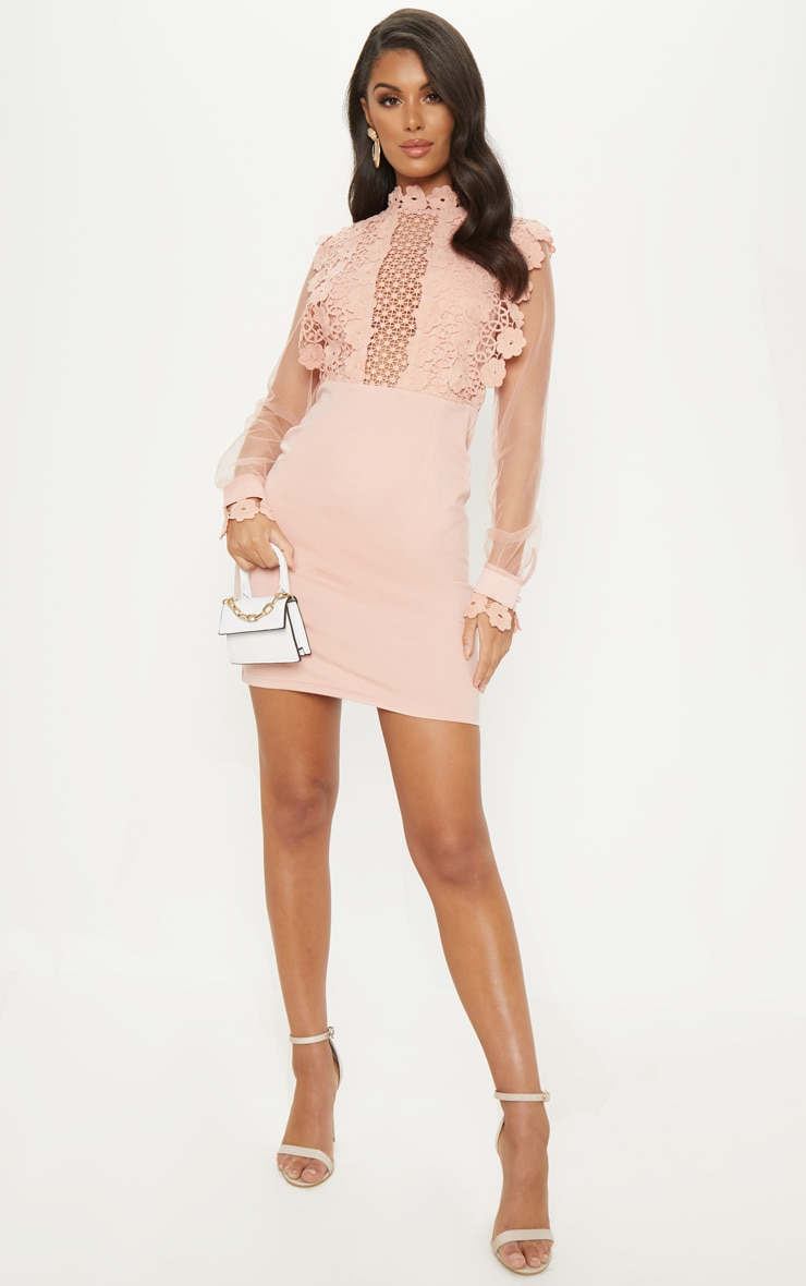 Dusty Pink Lace Panel Sheer Sleeve Bodycon Dress 4