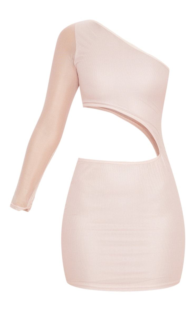 Rose Mesh Cut Out One Shoulder Bodycon Dress 3