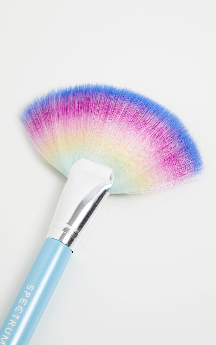 Spectrum Rainbow Extra Large Fan Brush 2