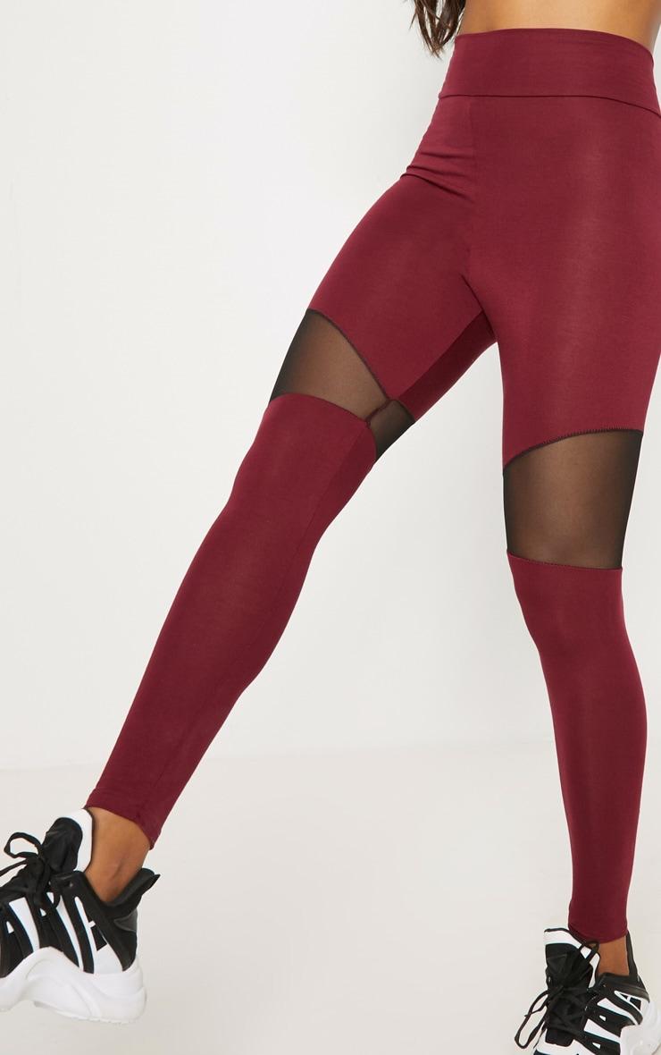 Maroon Mesh Panel Jersey Legging  5
