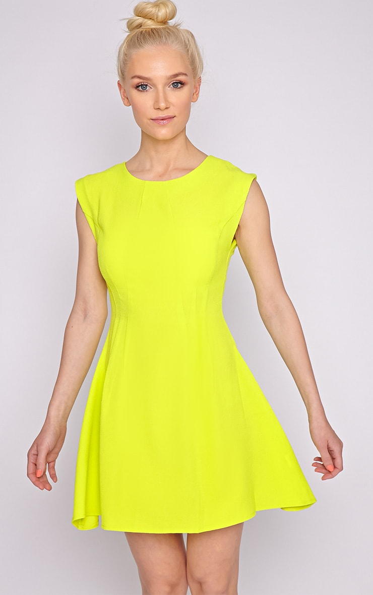 Billie Lime Skater Dress 1