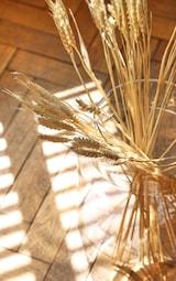 Natural Dried Grass 2