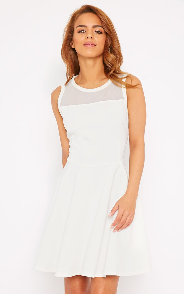 Bridgette White Mesh Panel Skater Dress 4