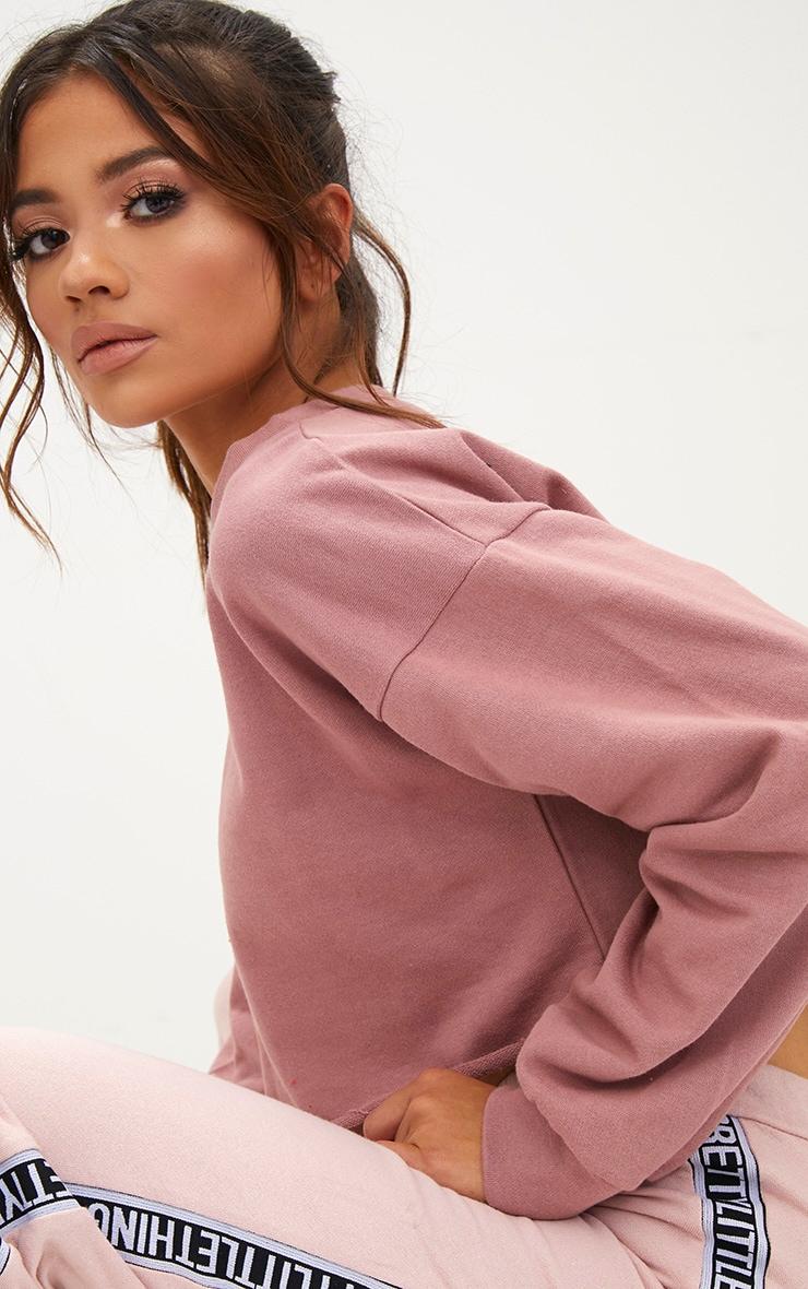 Petite Pink Cropped Sweater 5