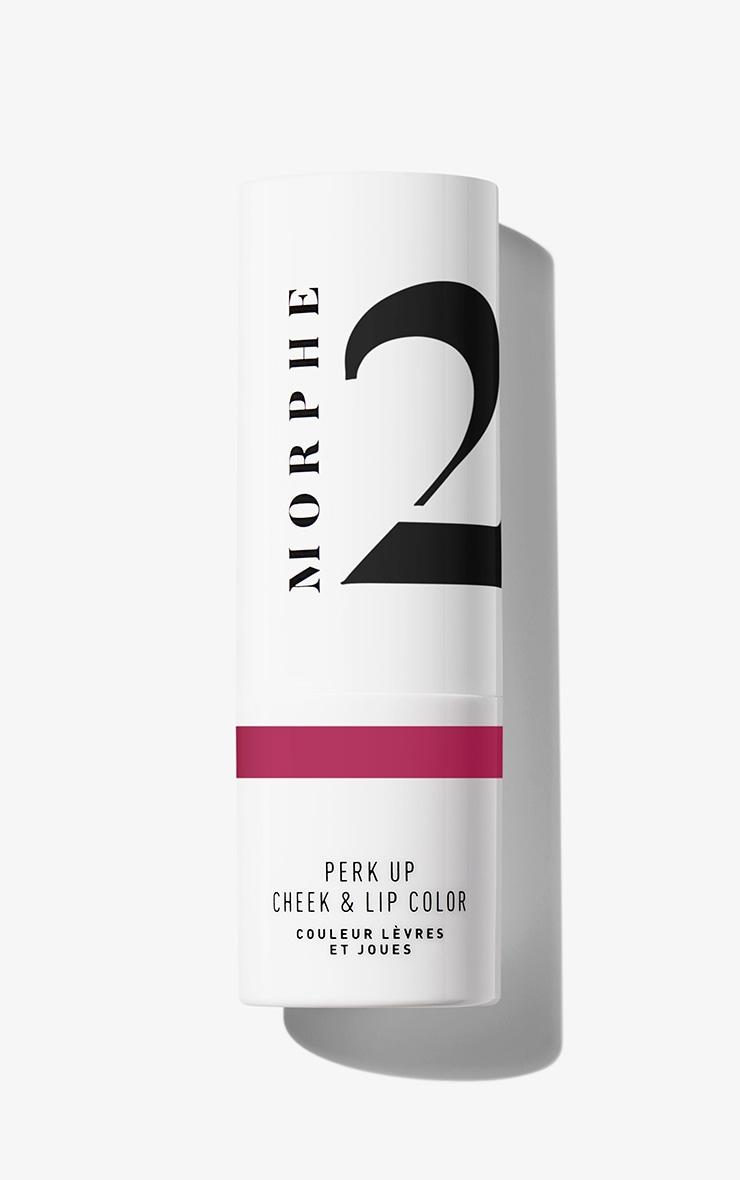 Morphe 2 Perk Up Cheek & Lip Color Berry Dreams 3