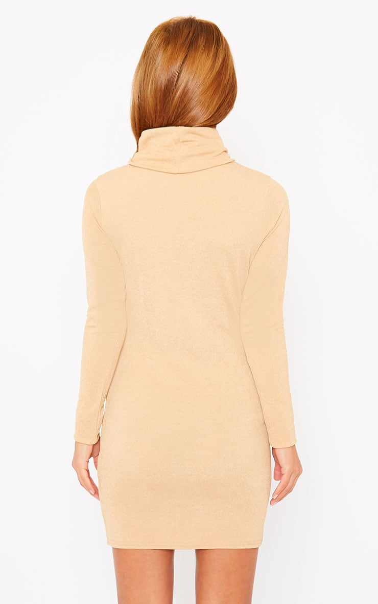 Catrina Camel Roll Neck Dress 2