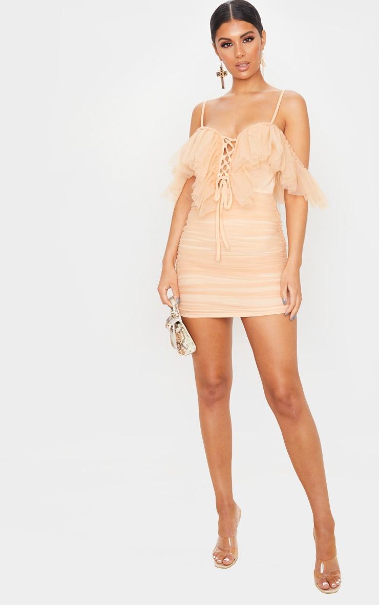 Nude Mesh Ruffle Tie Front Bodycon Dress 4