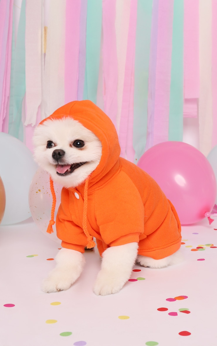 Orange Doggy Hoodie 3