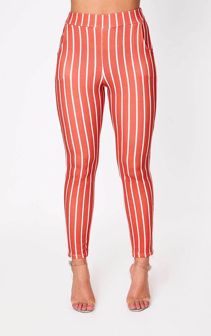 Red Stripe Skinny Trousers 2
