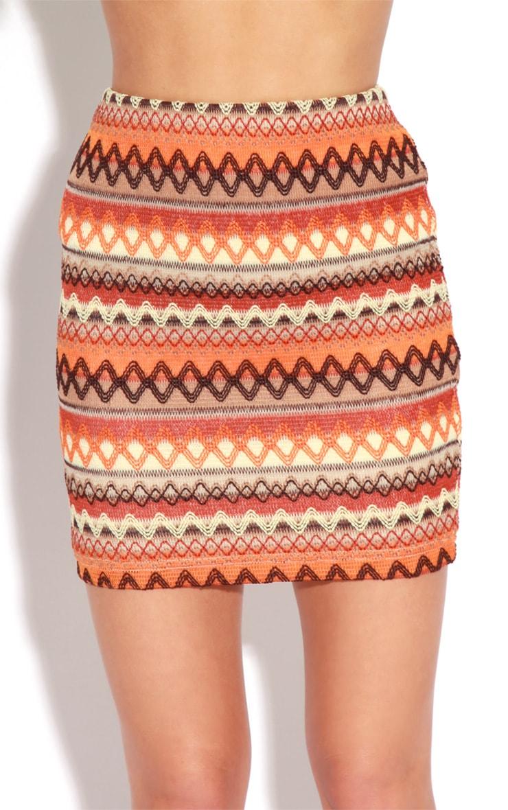 Dani Orange Embroidered Mini Skirt 4