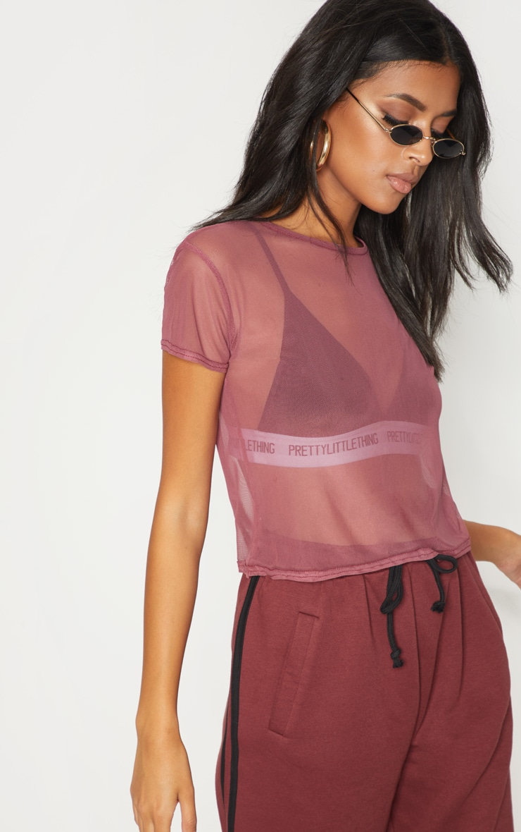 Maroon Sheer Mesh T Shirt 1