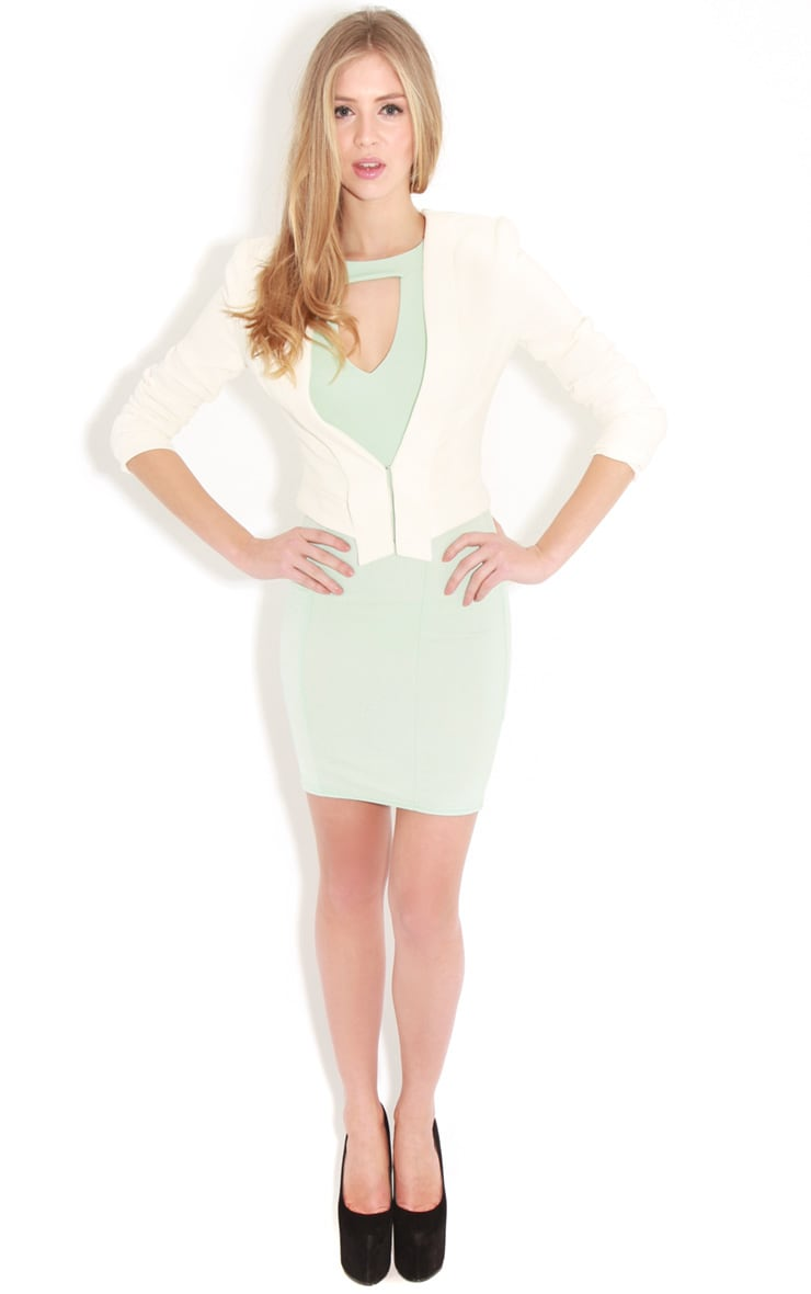 Henrietta Mint Tailored Chiffon Dress 3