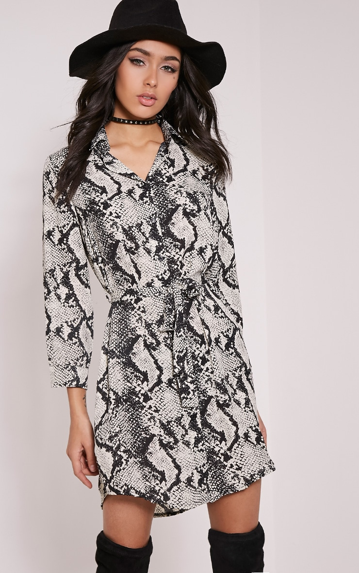Reenie Snake Print Shirt Dress 1