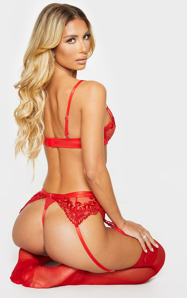 Red Embroidered Lace Underwired Plunge Bra 2