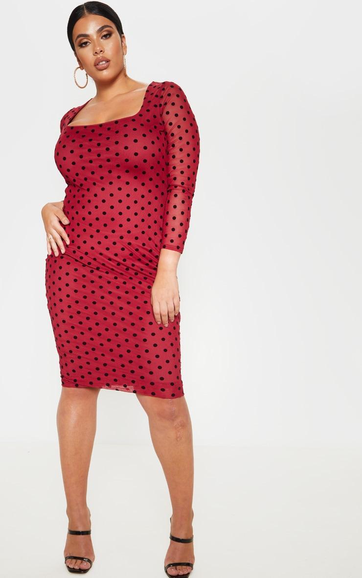 Plus Burgundy Polka Dot Mesh Square Neck Midi Dress  1