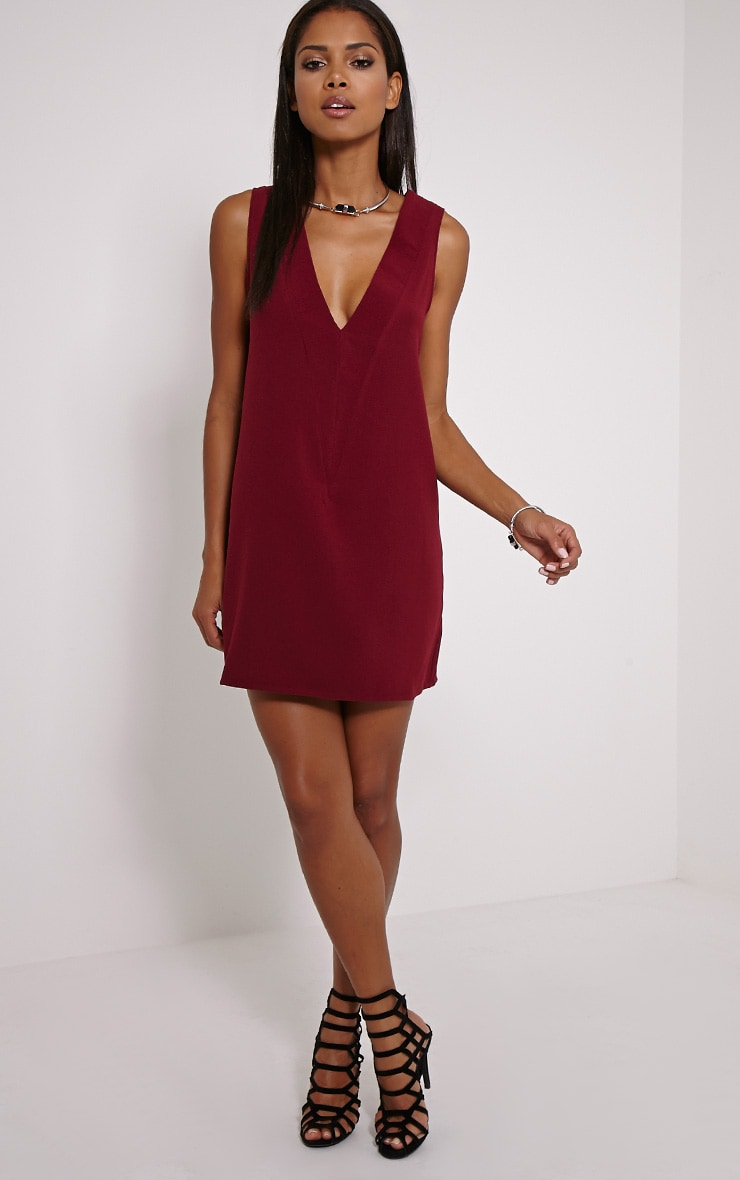 Haelyn Wine Plunge V Shape Loose Fit Binding Dress 3