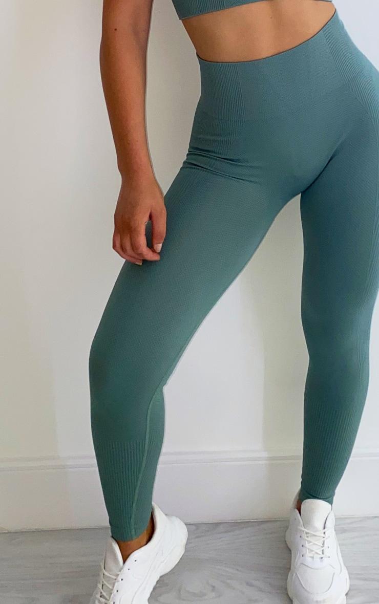 Sage Green Textured Seamless High Waist Gym Legging 2