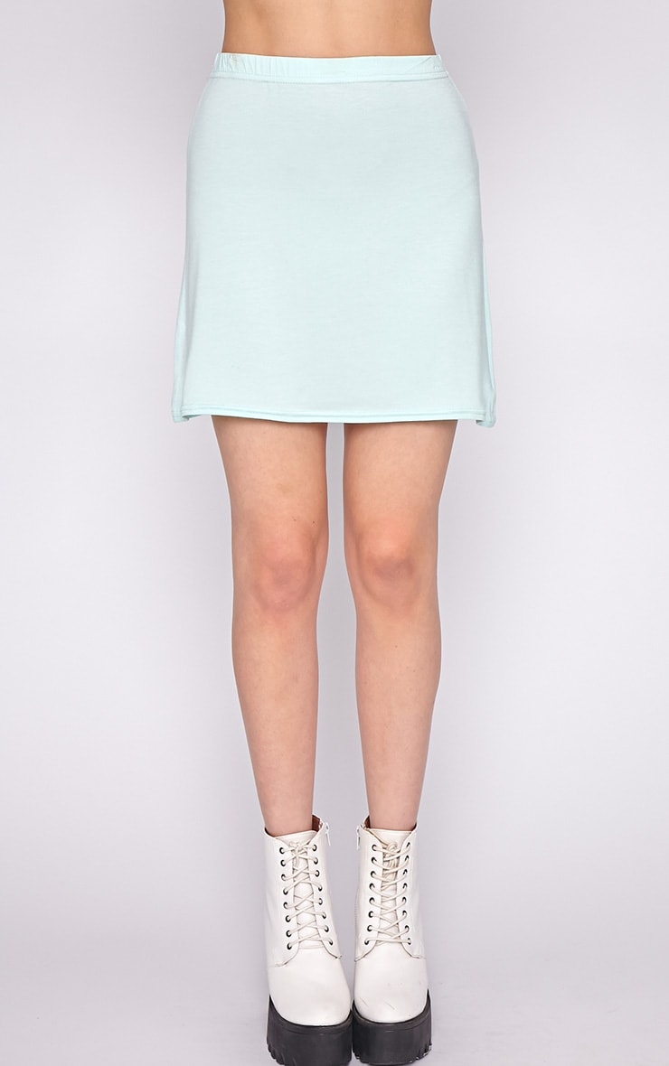 Erika Mint A Line Mini Skirt  3