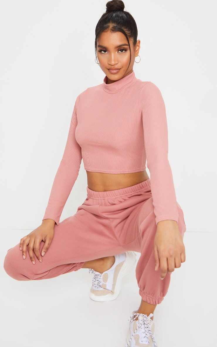 Dusty Pink High Neck Ribbed Long Sleeve Crop Top 3