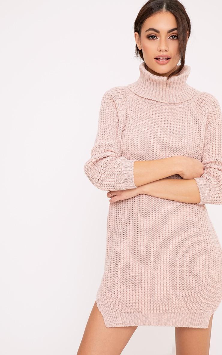 Aeeda Blush Chunky Roll Neck Knitted Tunic Dress 1